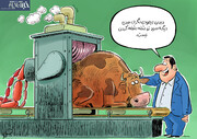 ببینید سوسیس از گوشت گرانتر شد!