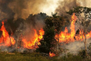 بسیج نیروهای مقابله با بحران گلستان برای خاموش کردن آتش جنگل