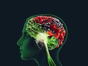 مغز و حافظه خود را با این سه ماده غذایی تقویت کنید