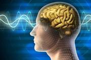 ببینید | ۸ دلیل کاهش قدرت حافظه