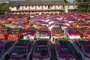 ببینید | تبدیل پارکینگ تاکسیها به باغچه سبزیجات در بانکوک
