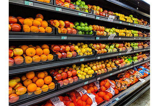 کسب و کاری که زحمت خرید از میادین میوه را از زندگی مردم حذف کرد