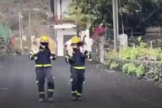 ببینید   تلاش آتش نشانان اسپانیایی برای نجات گوسفندان از دل آتش