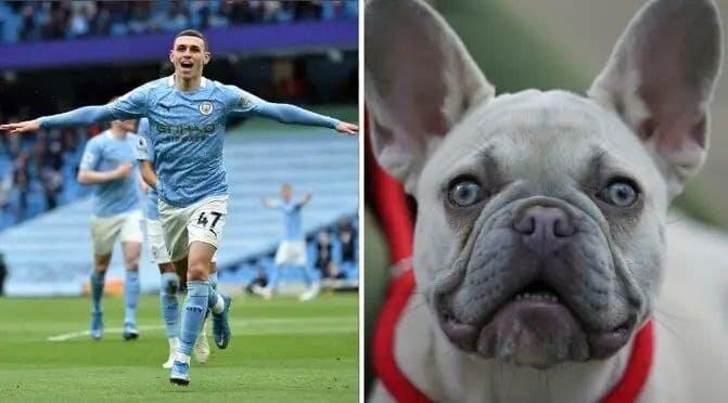 نام متفاوت سگ فیل فودن: «جام اتحادیه»!/عکس