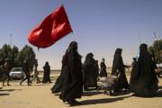 تصاویر | پیاده روی اربعین حسینی در عراق