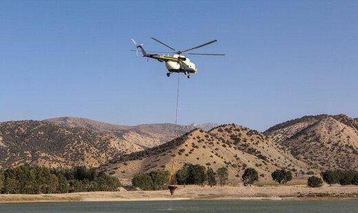 توضیح مقام وزارت دفاع درباره آتش سوزی جنگلهای گلستان