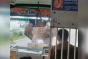 ببینید | لحظه حمله فیل عصبانی به یک اتوبوس در هند
