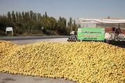 ورود آستان قدس رضوی برای خرید سیب صنعتی آذربایجانغربی