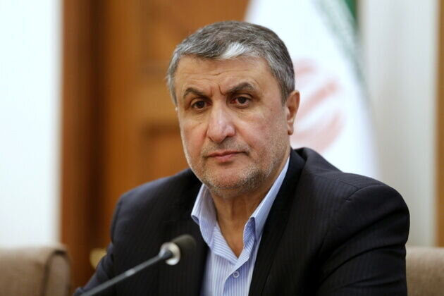 AEOI Chief: Iran moving in line with peaceful nuclear objectives