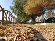 برگهای پائیزی در ۴ نقطه شهر ارومیه جمعآوری نمیشود