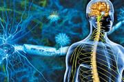 اینفوگرافیک | ۶ شایعه اشتباه درباره بیماری ام اس