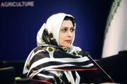 نمایشگاه توانمندیهای صنایع دستی و گردشگری البرز و قزوین در کرج برگزار میشود