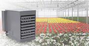 انتخاب بخاری ارزان برای گرمایش گلخانه گل های زینتی